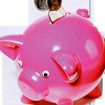 Valuta, mai atractiva pentru economisire decat pentru creditare