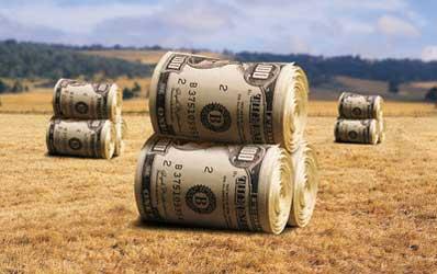 Agricultorii au inceput sa invete drumul spre banca