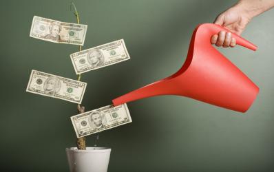Banca Nationala solicita recapitalizarea a 12 banci