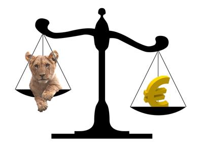 Creditele acordate de banci, tot mai putine. Romanii inca prefera euro